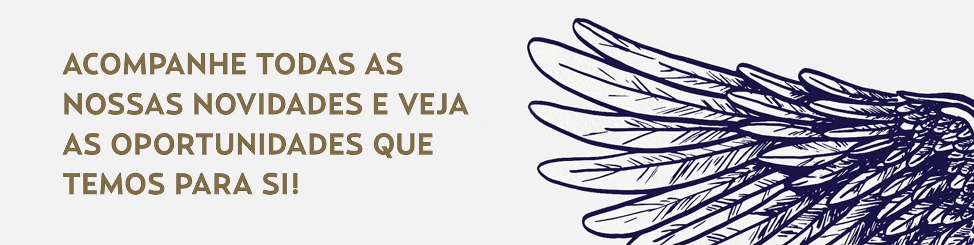 top_novidades